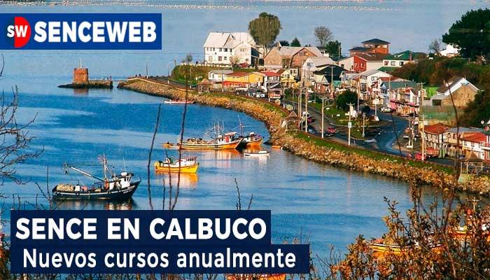 Sence Calbuco