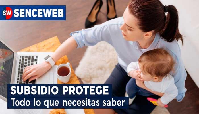 Subsidio Protege